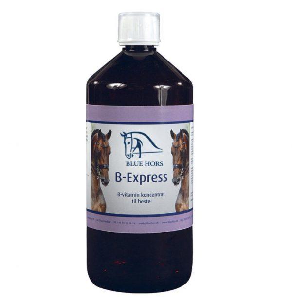BLUE HORS B-EXPRESS